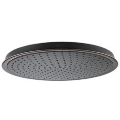 Click here to see Hansgrohe 28428921 Hansgrohe 28428921 Raindance Oil Rubbed Bronze Showerhead