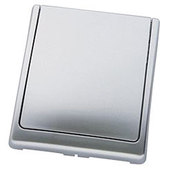 Click here to see Grohe 43179P00 Grohe 43179P00 Cover Plate, Matte Chrome