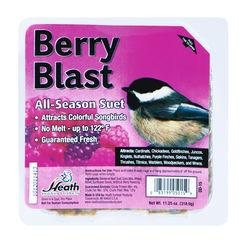 Click here to see Heath DD-15 Heath Outdoor DD-15 All Season Berry Blast Suet Cake, 11.25 oz