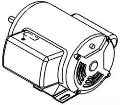 Click here to see Ridgid 45052 Ridgid 45052 Motor, 220V/240V 50HZ