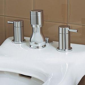 Bidet Faucets Image